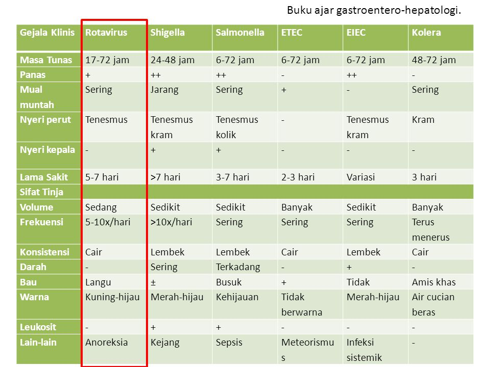 Gejala KlinisRotavirusShigellaSalmonellaETECEIECKolera Masa Tunas17-72 jam24-48 jam6-72 jam 48-72 jam Panas+++ - - Mual muntah SeringJarangSering+- Ny