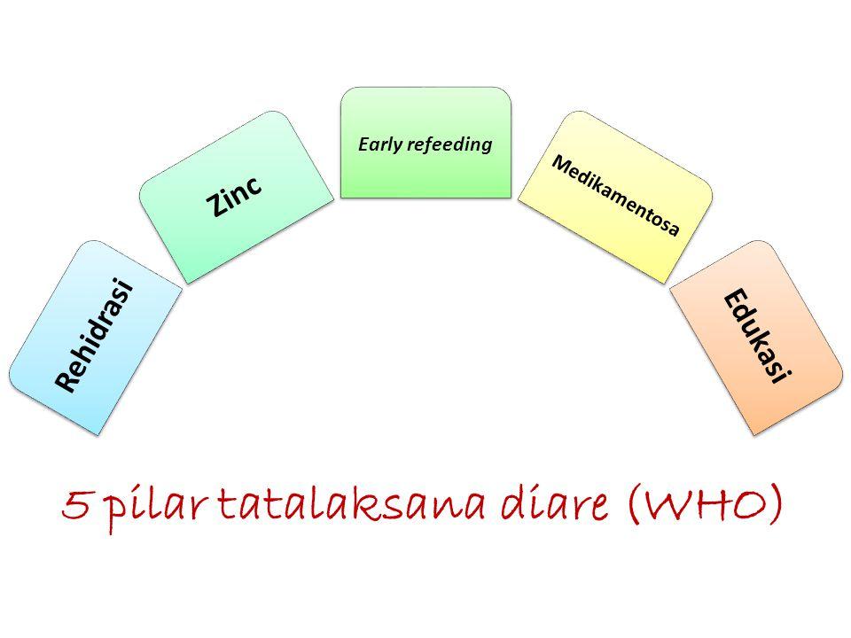 Rehidrasi Zinc Early refeeding Medikamentosa Edukasi 5 pilar tatalaksana diare (WHO)