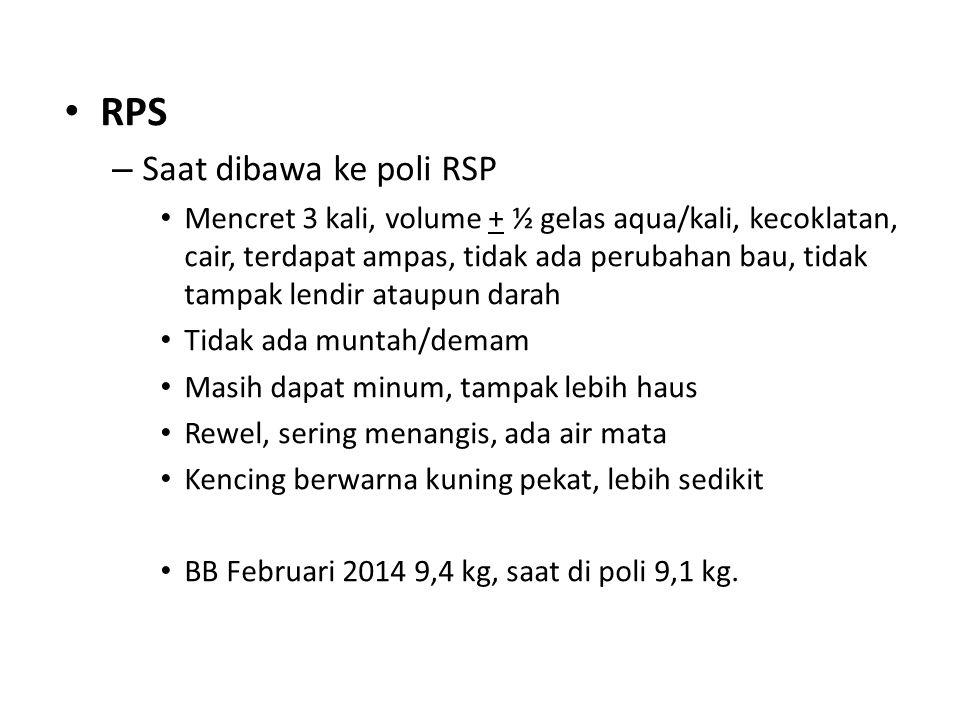 RPS – Saat dibawa ke poli RSP Mencret 3 kali, volume + ½ gelas aqua/kali, kecoklatan, cair, terdapat ampas, tidak ada perubahan bau, tidak tampak lend