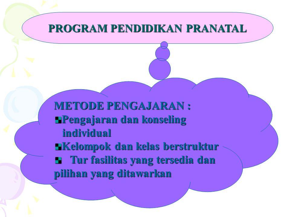 PROGRAM PENDIDIKAN PRANATAL METODE PENGAJARAN : Pengajaran dan konseling individual individual Kelompok dan kelas berstruktur Tur fasilitas yang terse