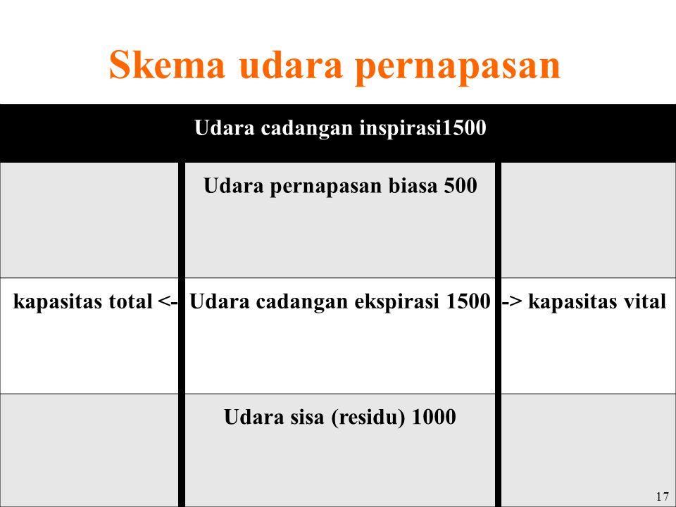 Skema udara pernapasan Udara cadangan inspirasi1500 Udara pernapasan biasa 500 kapasitas total <-Udara cadangan ekspirasi 1500-> kapasitas vital Udara sisa (residu) 1000 17