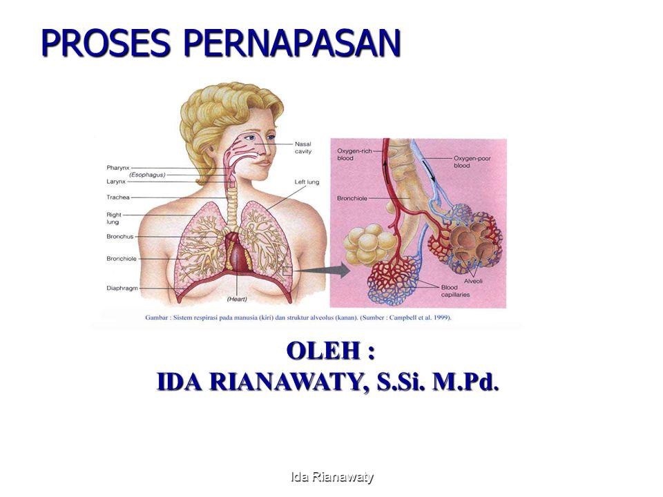 PROSES PERNAPASAN OLEH : OLEH : IDA RIANAWATY, S.Si. M.Pd. Ida Rianawaty