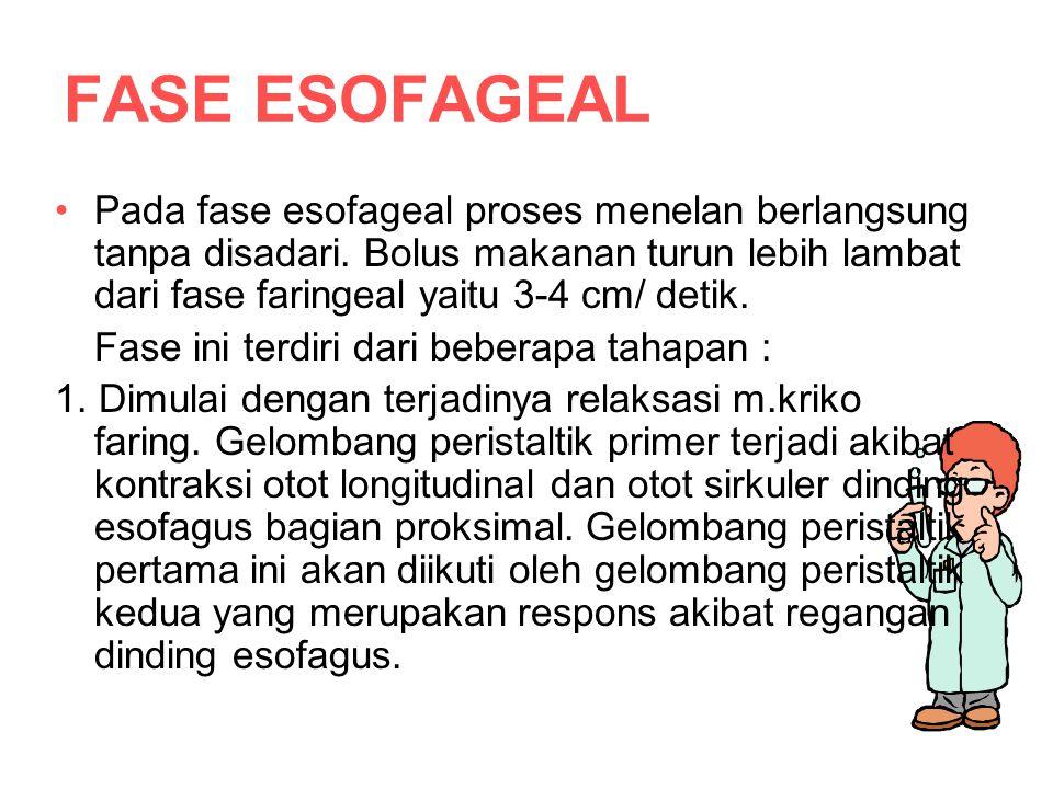 FASE ESOFAGEAL Pada fase esofageal proses menelan berlangsung tanpa disadari.