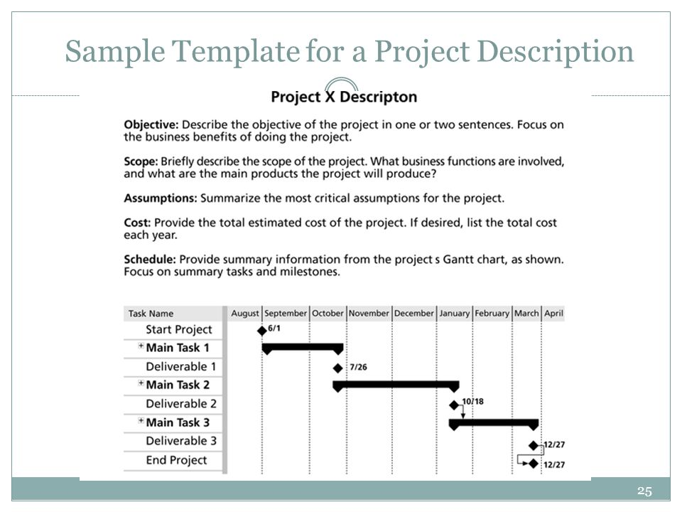 25 Sample Template for a Project Description