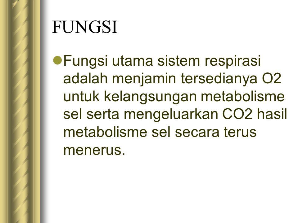 FUNGSI Fungsi utama sistem respirasi adalah menjamin tersedianya O2 untuk kelangsungan metabolisme sel serta mengeluarkan CO2 hasil metabolisme sel se
