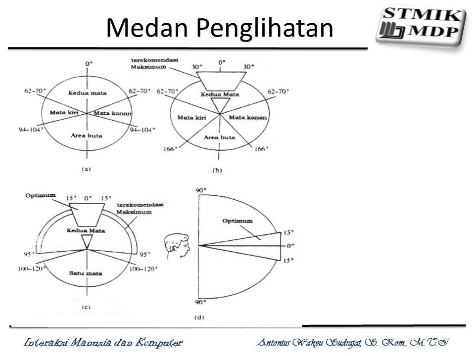 Interaksi Manusia dan Komputer Antonius Wahyu Sudrajat, S. Kom., M.T.I Medan Penglihatan