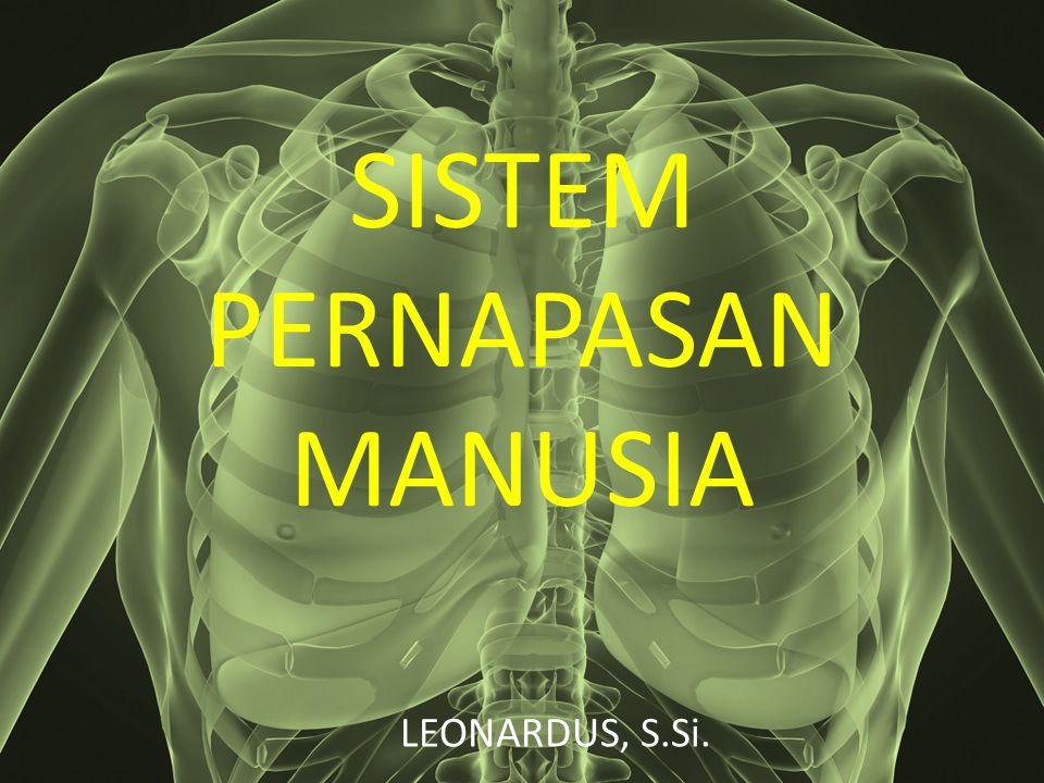 SISTEM PERNAPASAN MANUSIA LEONARDUS, S.Si.