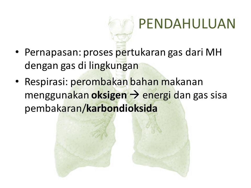 PENDAHULUAN Pernapasan: proses pertukaran gas dari MH dengan gas di lingkungan Respirasi: perombakan bahan makanan menggunakan oksigen  energi dan ga