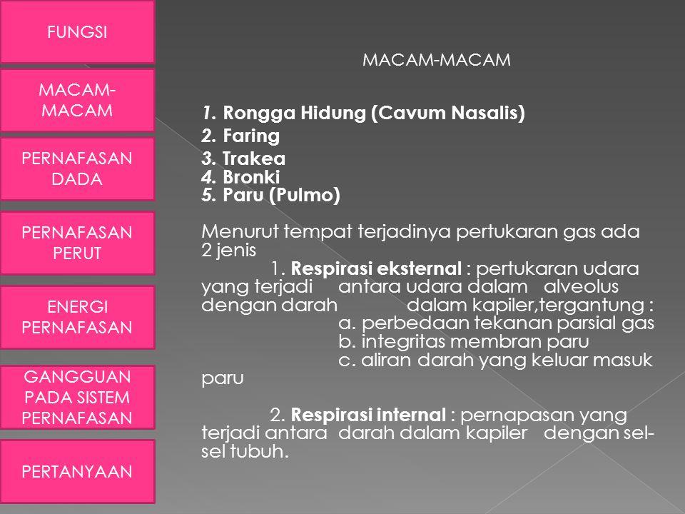 MACAM-MACAM 1. Rongga Hidung (Cavum Nasalis) 2. Faring 3. Trakea 4. Bronki 5. Paru (Pulmo) Menurut tempat terjadinya pertukaran gas ada 2 jenis 1. Res