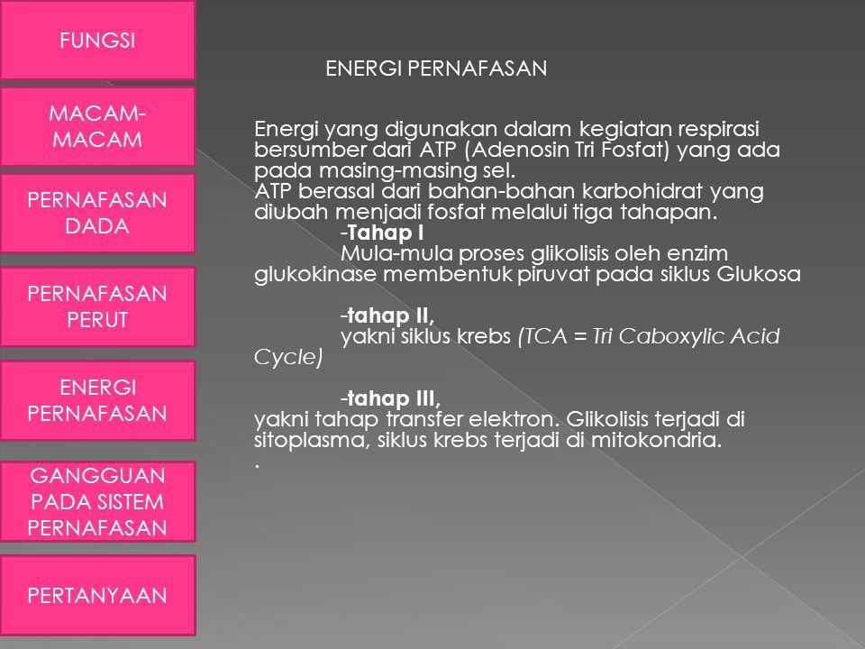 ENERGI PERNAFASAN Energi yang digunakan dalam kegiatan respirasi bersumber dari ATP (Adenosin Tri Fosfat) yang ada pada masing-masing sel. ATP berasal