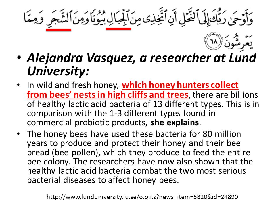 Alejandra Vasquez, a researcher at Lund University: In wild and fresh honey, which honey hunters collect from bees' nests in high cliffs and trees, th