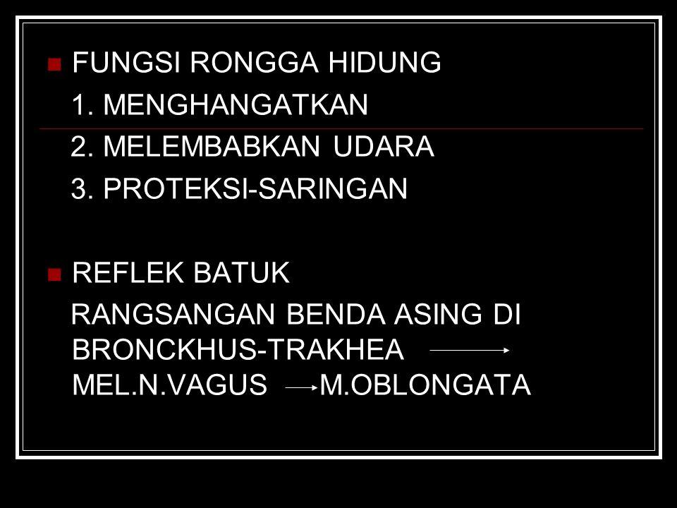 FUNGSI RONGGA HIDUNG 1. MENGHANGATKAN 2. MELEMBABKAN UDARA 3. PROTEKSI-SARINGAN REFLEK BATUK RANGSANGAN BENDA ASING DI BRONCKHUS-TRAKHEA MEL.N.VAGUS M