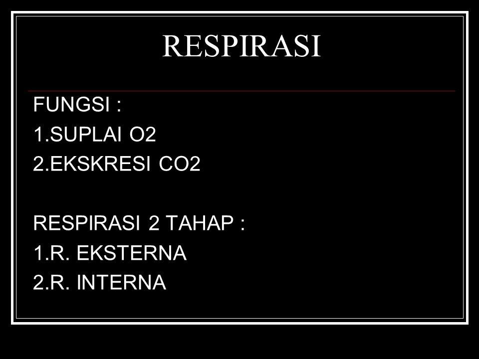 RESPIRASI FUNGSI : 1.SUPLAI O2 2.EKSKRESI CO2 RESPIRASI 2 TAHAP : 1.R. EKSTERNA 2.R. INTERNA