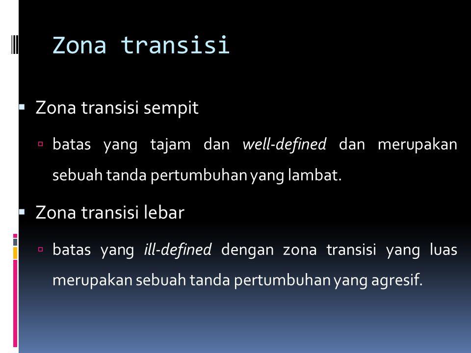 Zona transisi  Zona transisi sempit  batas yang tajam dan well-defined dan merupakan sebuah tanda pertumbuhan yang lambat.