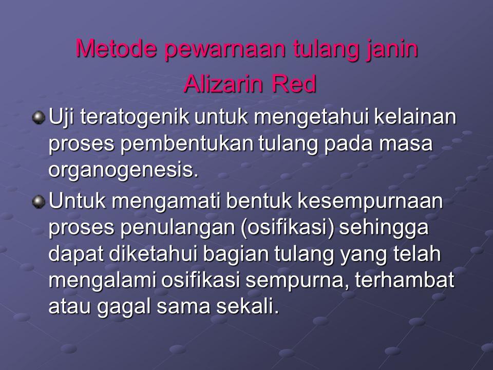 Metode pewarnaan tulang janin Alizarin Red Alizarin Red Uji teratogenik untuk mengetahui kelainan proses pembentukan tulang pada masa organogenesis. U