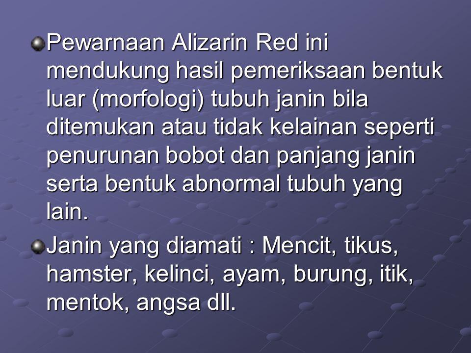 Pewarnaan Alizarin Red ini mendukung hasil pemeriksaan bentuk luar (morfologi) tubuh janin bila ditemukan atau tidak kelainan seperti penurunan bobot