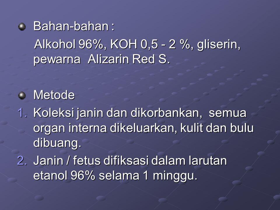 Bahan-bahan : Alkohol 96%, KOH 0,5 - 2 %, gliserin, pewarna Alizarin Red S. Alkohol 96%, KOH 0,5 - 2 %, gliserin, pewarna Alizarin Red S.Metode 1.Kole