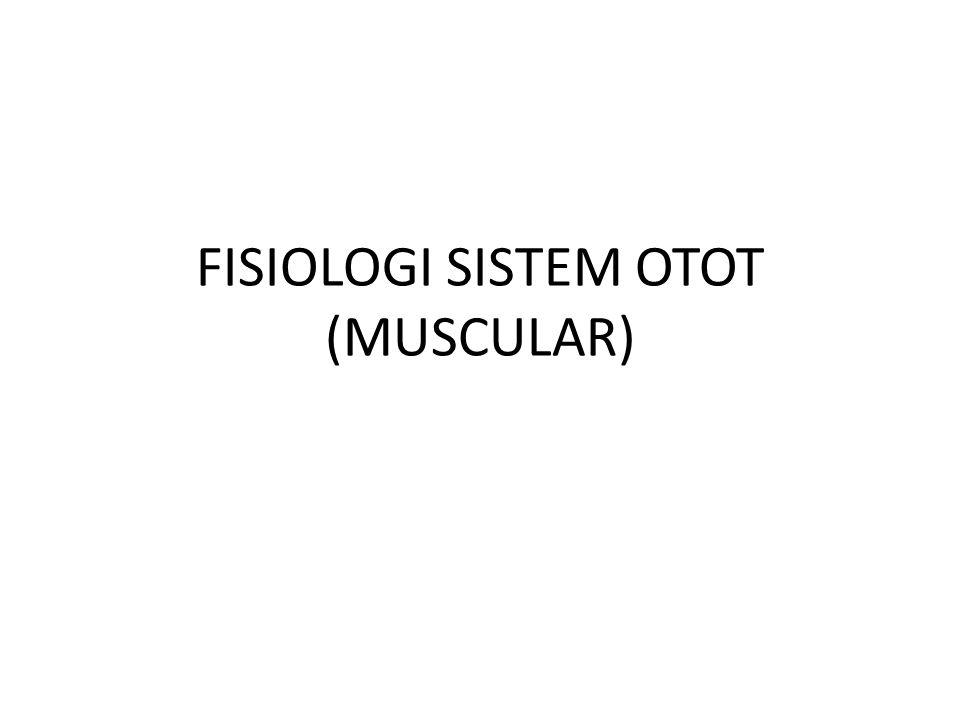 PERUBAHAN BENTUK Pada saat terjadi kontraksi, otot menjadi pendek dan gemuk, tetapi tidak mengalami perubahan volume Terjadi perubahan bentuk dari protein Menurut Szent-Gyorgy  perubahan ini karena adanya protein dalam otot  aktomiosin  terurai menjadi aktin & miosin  aktin mengalami torsi (perputaran)