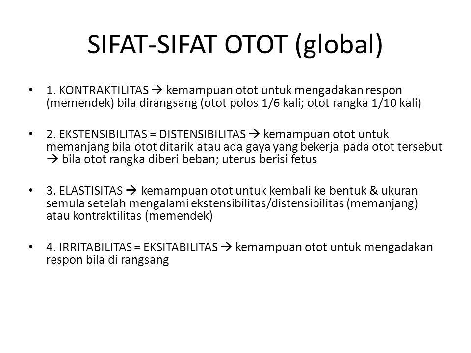 SIFAT-SIFAT OTOT (global) 1. KONTRAKTILITAS  kemampuan otot untuk mengadakan respon (memendek) bila dirangsang (otot polos 1/6 kali; otot rangka 1/10