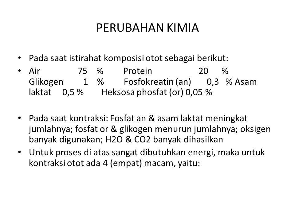 PERUBAHAN KIMIA Pada saat istirahat komposisi otot sebagai berikut: Air 75 % Protein 20 % Glikogen 1 % Fosfokreatin (an) 0,3 % Asam laktat 0,5 % Hekso