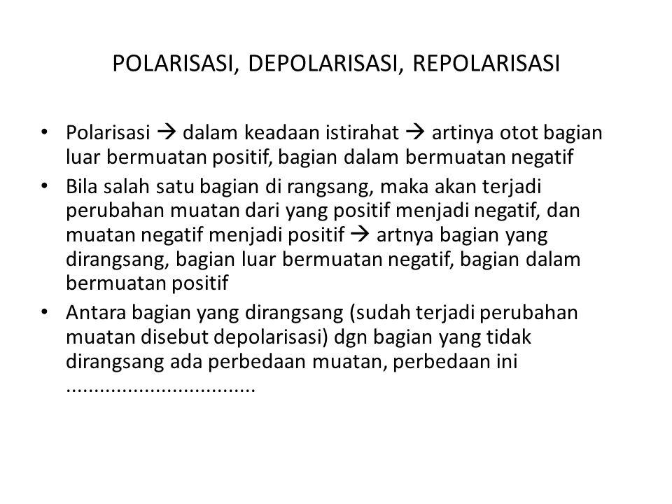 POLARISASI, DEPOLARISASI, REPOLARISASI Polarisasi  dalam keadaan istirahat  artinya otot bagian luar bermuatan positif, bagian dalam bermuatan negatif Bila salah satu bagian di rangsang, maka akan terjadi perubahan muatan dari yang positif menjadi negatif, dan muatan negatif menjadi positif  artnya bagian yang dirangsang, bagian luar bermuatan negatif, bagian dalam bermuatan positif Antara bagian yang dirangsang (sudah terjadi perubahan muatan disebut depolarisasi) dgn bagian yang tidak dirangsang ada perbedaan muatan, perbedaan ini..................................