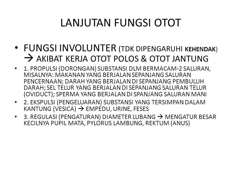 LANJUTAN FUNGSI INVOLUNTER 4.