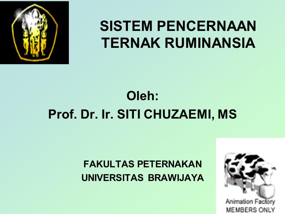 SISTEM PENCERNAAN TERNAK RUMINANSIA Oleh: Prof.Dr.