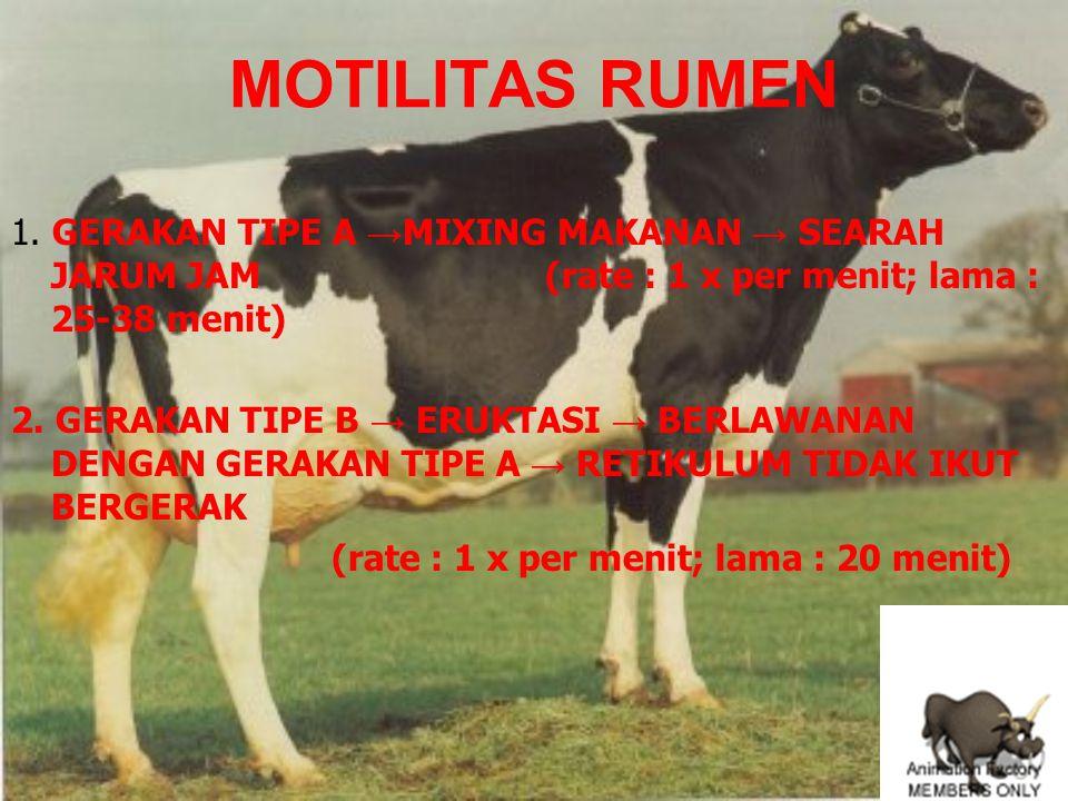 MOTILITAS RUMEN 1.