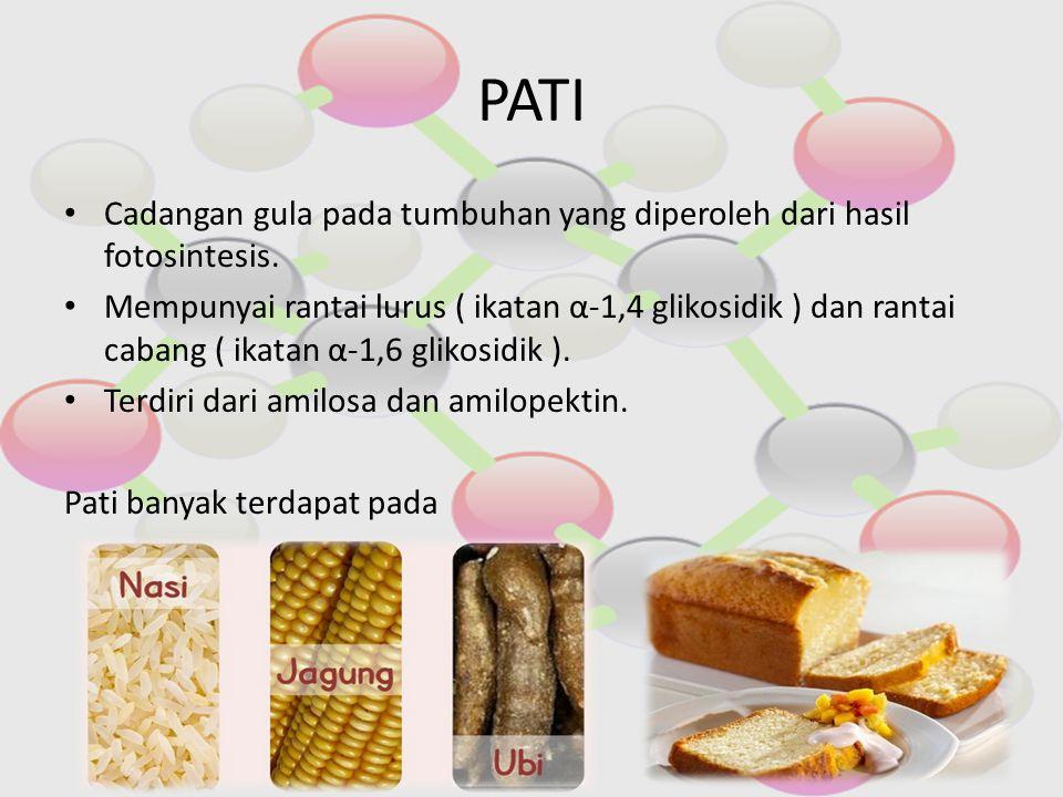 PATI Cadangan gula pada tumbuhan yang diperoleh dari hasil fotosintesis.