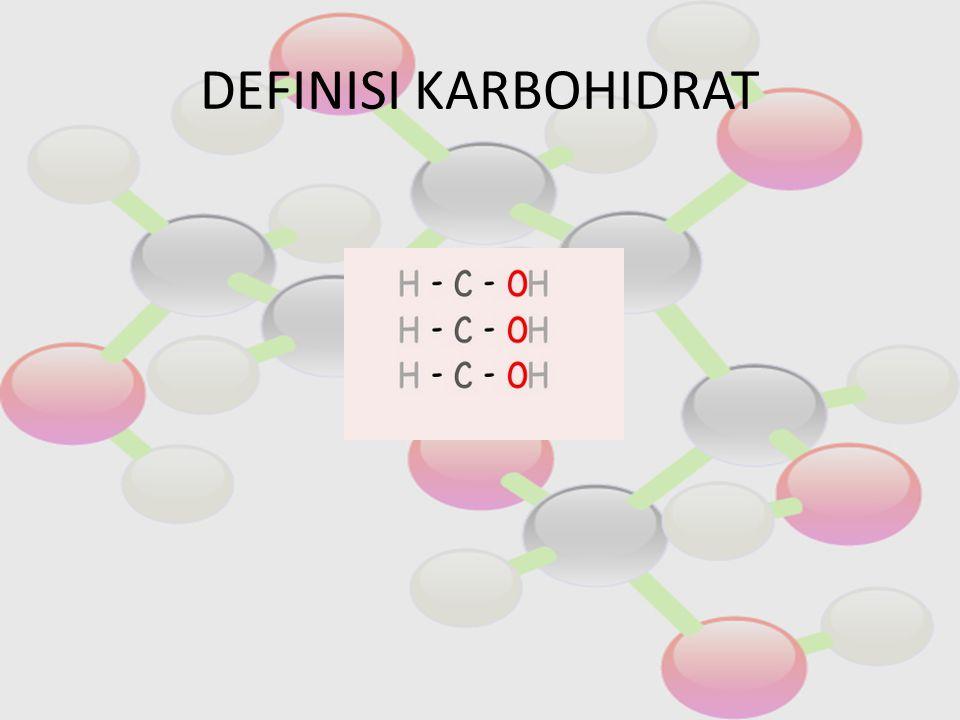 POLISAKARIDA Polisakarida banyak gula Molekul besar yang terdiri dari banyak gula.
