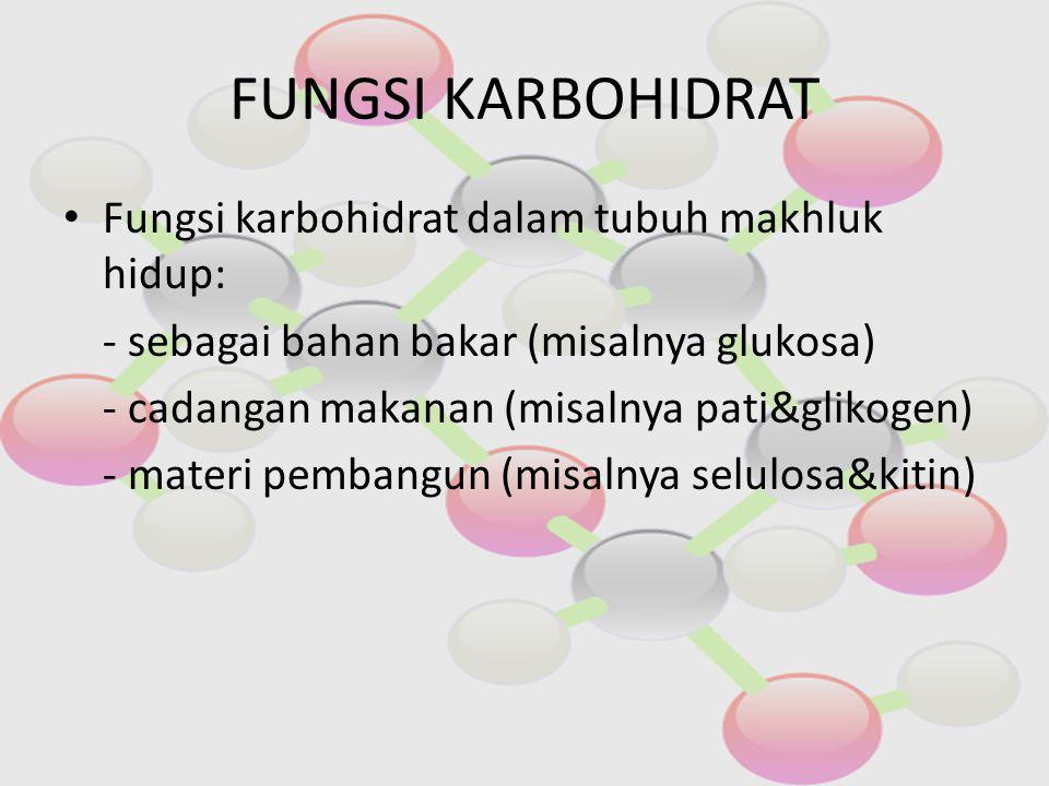 FUNGSI KARBOHIDRAT Fungsi karbohidrat dalam tubuh makhluk hidup: - sebagai bahan bakar (misalnya glukosa) - cadangan makanan (misalnya pati&glikogen)