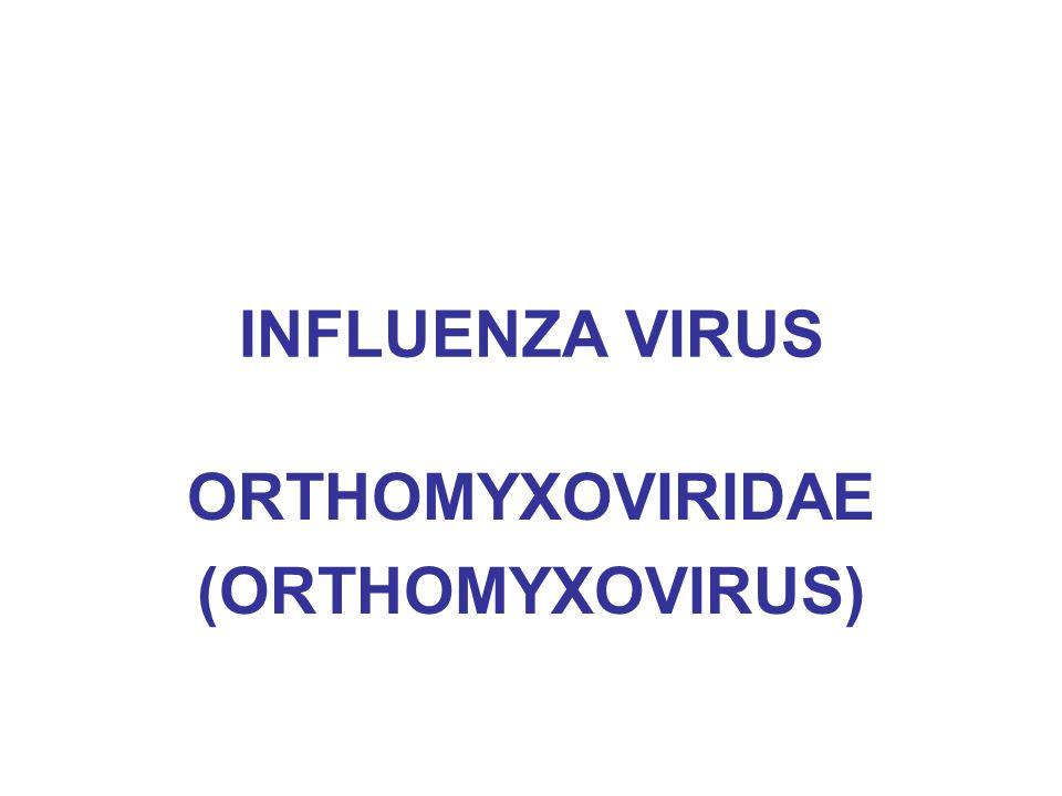 Sejarah infeksi influenza Sepanjang abad 20 sudah tiga kali mengalami Flu-Pandemik 1918-1919 (Spanish Flu; korban 40-50 juta, lebih besar dari PD 2; virus influenza type H1N1(A/FM/1/47) 1957 (Asian Flu; kasus pertama di China; korban 1 juta; virus influenza type H2N2 (A/Singapore/1/57) 1968 (Hong Kong Flu; kasus pertama di cina; korban 1 juta; virus influenza type H3N2 (A/Hong Kong/1/68) Ketiga jenis ini awalnya berjangkit pada hewan, saat ini sebagian besar manusia sudah punya kekebalan terhadap ketiga jenis virus influenza tsb.