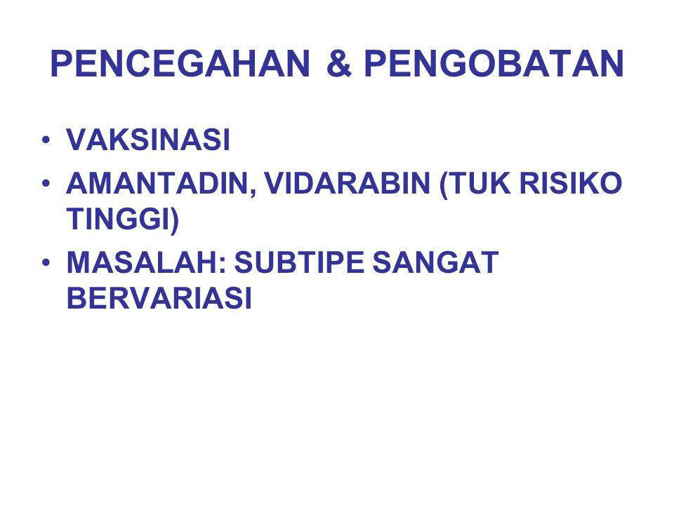 PENCEGAHAN & PENGOBATAN VAKSINASI AMANTADIN, VIDARABIN (TUK RISIKO TINGGI) MASALAH: SUBTIPE SANGAT BERVARIASI