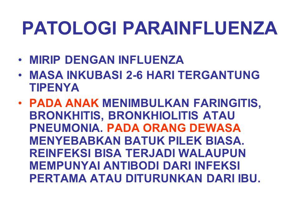 PATOLOGI PARAINFLUENZA MIRIP DENGAN INFLUENZA MASA INKUBASI 2-6 HARI TERGANTUNG TIPENYA PADA ANAK MENIMBULKAN FARINGITIS, BRONKHITIS, BRONKHIOLITIS AT