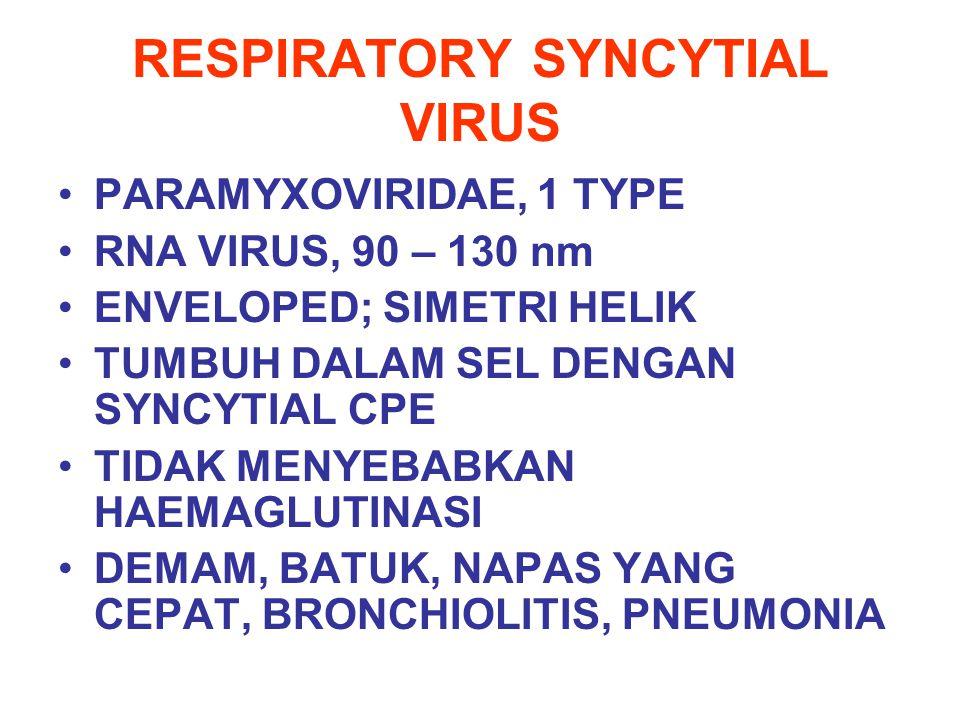 RESPIRATORY SYNCYTIAL VIRUS PARAMYXOVIRIDAE, 1 TYPE RNA VIRUS, 90 – 130 nm ENVELOPED; SIMETRI HELIK TUMBUH DALAM SEL DENGAN SYNCYTIAL CPE TIDAK MENYEB