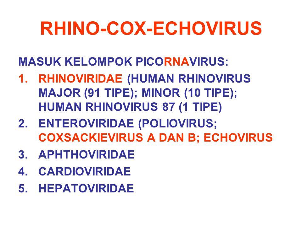 RHINO-COX-ECHOVIRUS MASUK KELOMPOK PICORNAVIRUS: 1.RHINOVIRIDAE (HUMAN RHINOVIRUS MAJOR (91 TIPE); MINOR (10 TIPE); HUMAN RHINOVIRUS 87 (1 TIPE) 2.ENT