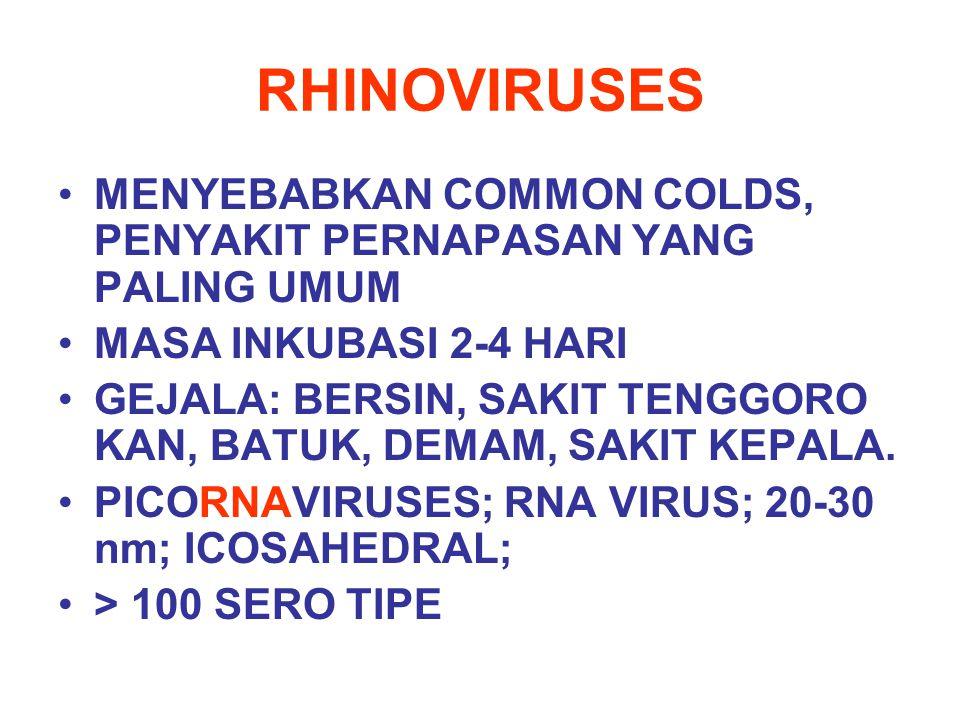 RHINOVIRUSES MENYEBABKAN COMMON COLDS, PENYAKIT PERNAPASAN YANG PALING UMUM MASA INKUBASI 2-4 HARI GEJALA: BERSIN, SAKIT TENGGORO KAN, BATUK, DEMAM, S