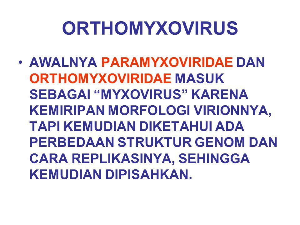 """ORTHOMYXOVIRUS AWALNYA PARAMYXOVIRIDAE DAN ORTHOMYXOVIRIDAE MASUK SEBAGAI """"MYXOVIRUS"""" KARENA KEMIRIPAN MORFOLOGI VIRIONNYA, TAPI KEMUDIAN DIKETAHUI AD"""