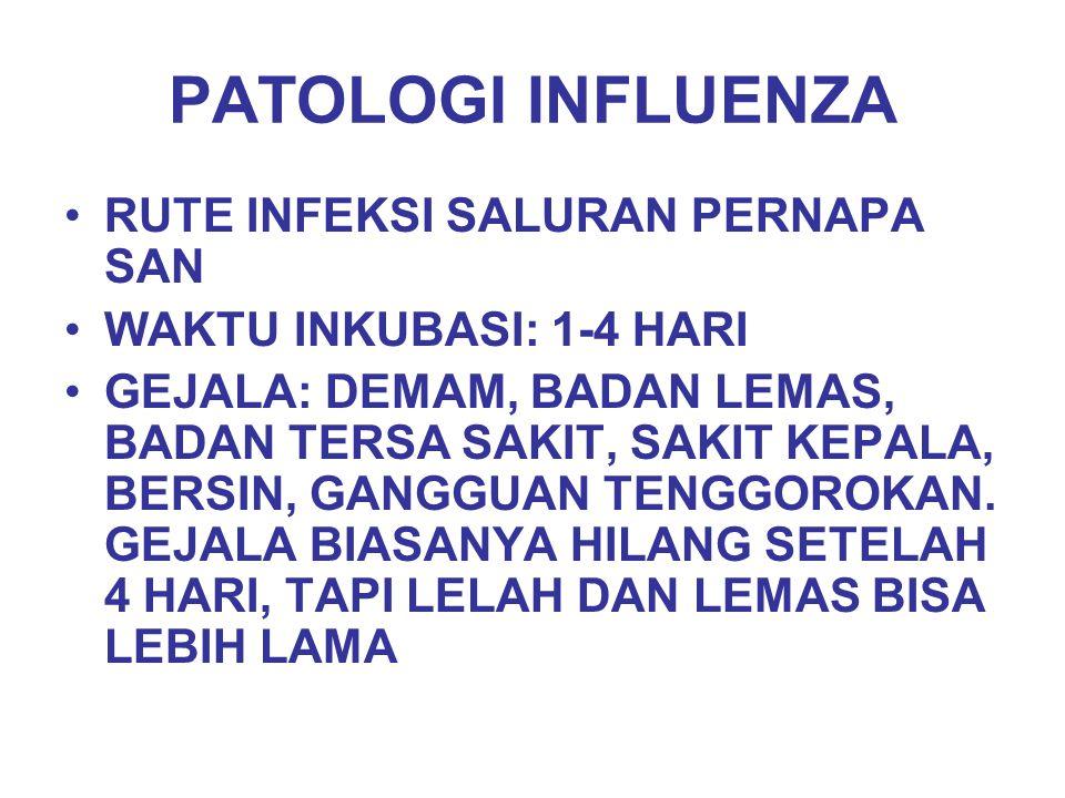 PATOLOGI INFLUENZA (LANJUT) PRIMARY INFLUENZAL PNEUMONIA SECONDARY BACTERIAL PNEUMONIA (STAPHYLOCOCCUS AUREUS, HAEMO PHILUS INFLUENZAE, PNEUMOCOCCI) REYE'S SYNDROME (MERUPAKAN KOMPLIKASI SETELAH INFEKSI INFLUENZAVIRUS TIPE B PADA ANAK- ANAK; DISINI TERJADI OEDEMA OTAK, DEGENERASI LEMAK TERUTAMA PADA HATI  NAIKNYA LEVEL TRANSAMINASE PADA DARAH; RATE KEMATIANNYA TINGGI)