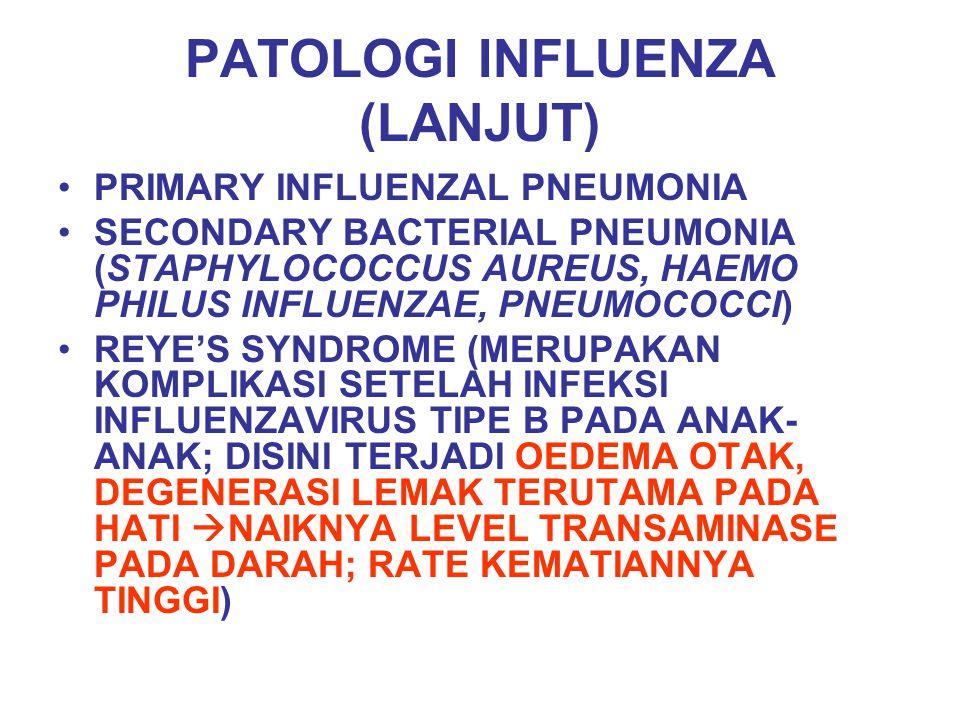 PATOLOGI INFLUENZA (LANJUT) PRIMARY INFLUENZAL PNEUMONIA SECONDARY BACTERIAL PNEUMONIA (STAPHYLOCOCCUS AUREUS, HAEMO PHILUS INFLUENZAE, PNEUMOCOCCI) R