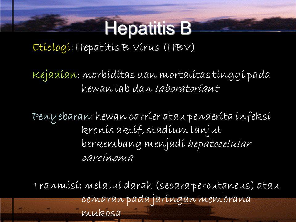 Hepatitis B Etiologi: Hepatitis B Virus (HBV) Kejadian: morbiditas dan mortalitas tinggi pada hewan lab dan laboratoriant Penyebaran: hewan carrier atau penderita infeksi kronis aktif, stadium lanjut berkembang menjadi hepatocelular carcinoma Tranmisi: melalui darah (secara percutaneus) atau cemaran pada jaringan membrana mukosa