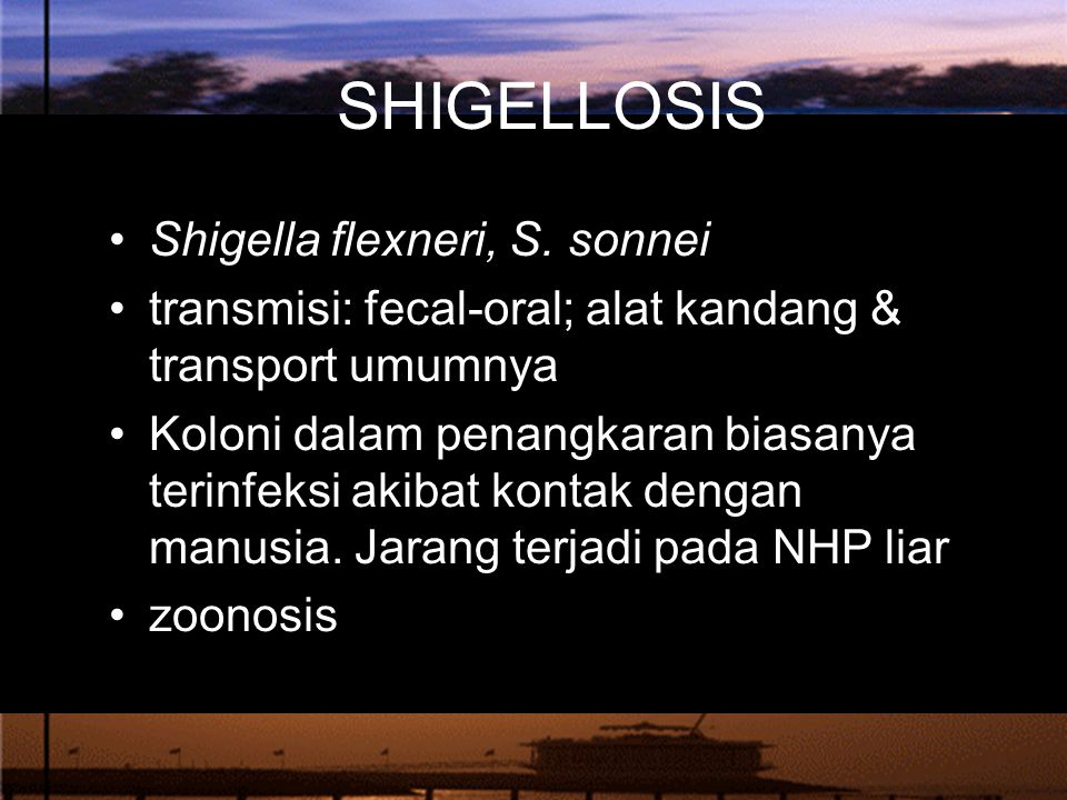 SHIGELLOSIS Shigella flexneri, S.