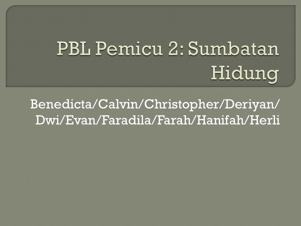 Benedicta/Calvin/Christopher/Deriyan/ Dwi/Evan/Faradila/Farah/Hanifah/Herli