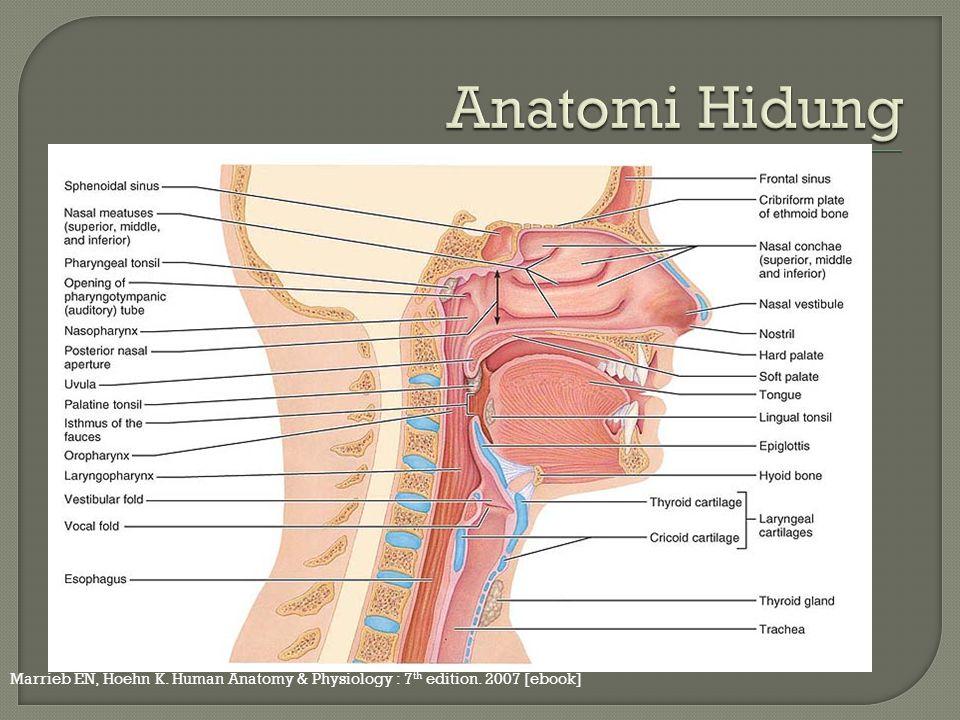 Marrieb EN, Hoehn K. Human Anatomy & Physiology : 7 th edition. 2007 [ebook]