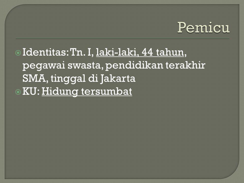  Identitas: Tn. I, laki-laki, 44 tahun, pegawai swasta, pendidikan terakhir SMA, tinggal di Jakarta  KU: Hidung tersumbat