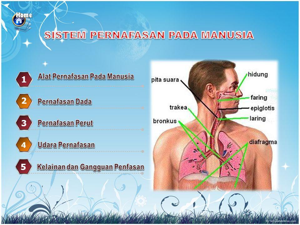 3.Kapasitas Vital Udara paru paru adalah…. a. 500.cc b.
