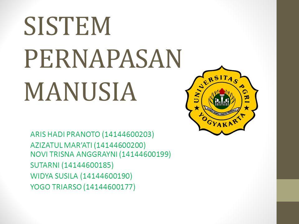 SISTEM PERNAPASAN MANUSIA ARIS HADI PRANOTO (14144600203) AZIZATUL MAR'ATI (14144600200) NOVI TRISNA ANGGRAYNI (14144600199) SUTARNI (14144600185) WID
