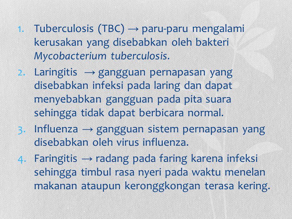 1.Tuberculosis (TBC) → paru-paru mengalami kerusakan yang disebabkan oleh bakteri Mycobacterium tuberculosis. 2.Laringitis → gangguan pernapasan yang