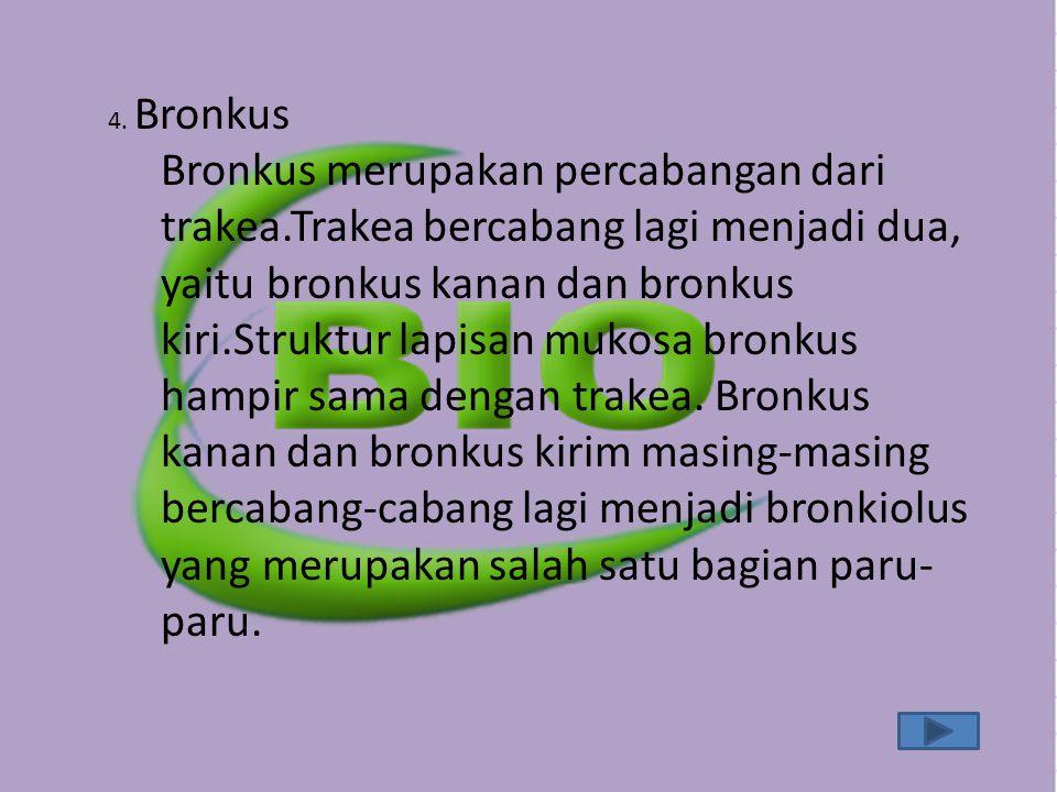 4. Bronkus Bronkus merupakan percabangan dari trakea.Trakea bercabang lagi menjadi dua, yaitu bronkus kanan dan bronkus kiri.Struktur lapisan mukosa b