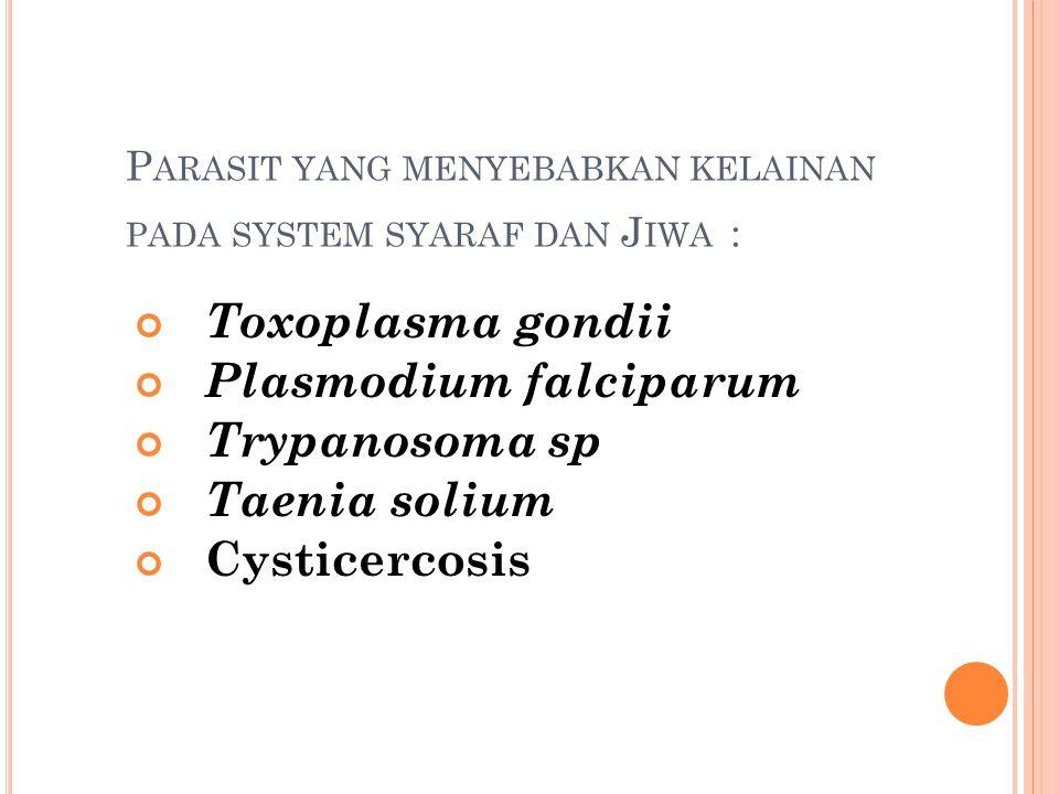 P ARASIT YANG MENYEBABKAN KELAINAN PADA SYSTEM SYARAF DAN J IWA : Toxoplasma gondii Plasmodium falciparum Trypanosoma sp Taenia solium Cysticercosis